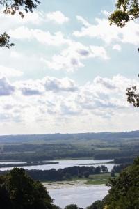 chestnut mount view